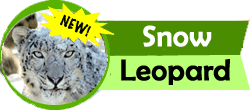 tit snow leopard new